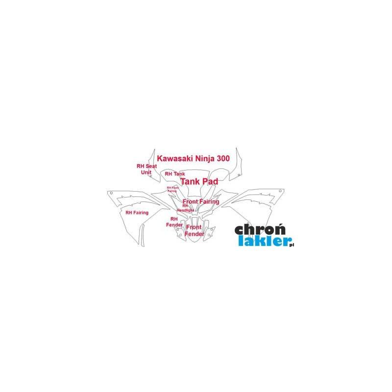 Kawasaki Ninja 300 - naklejki  / folie ochronne - zestaw